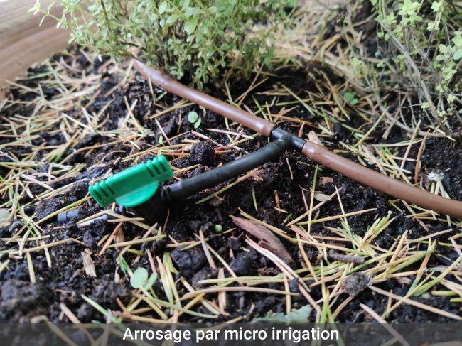 Arrosage-par-micro-irrigation-ot2pmjywhheg0m1akxthcil8c1yuflnkvmonj36q9y